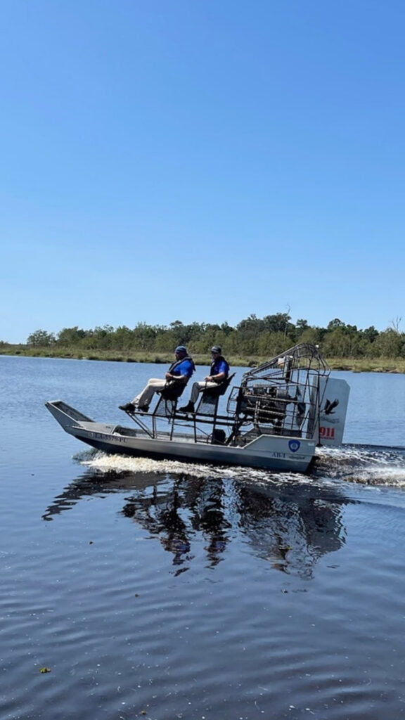 Hunters caught alligator suspected of killing Timothy Satterlee. Human remains found inside the reptile are likely from the missing 71-year-old Louisiana man.