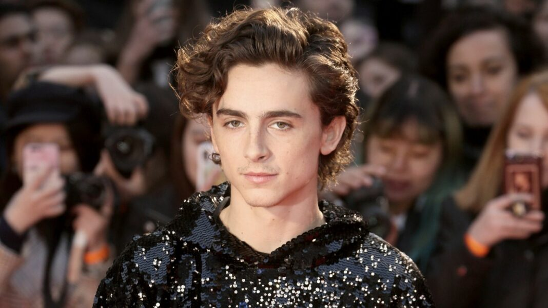 Timothee Chalamet Called Armie Hammer Abuse Allegations A 'Larger Conversation'
